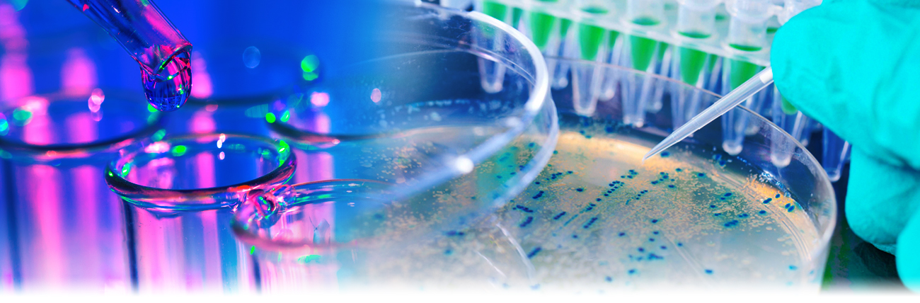 Laboratory Testing Service Details